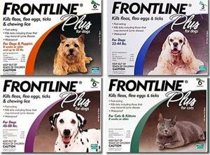 Frontline Combo $113.99 for 12 months. Australia version of medication - same active ingredients