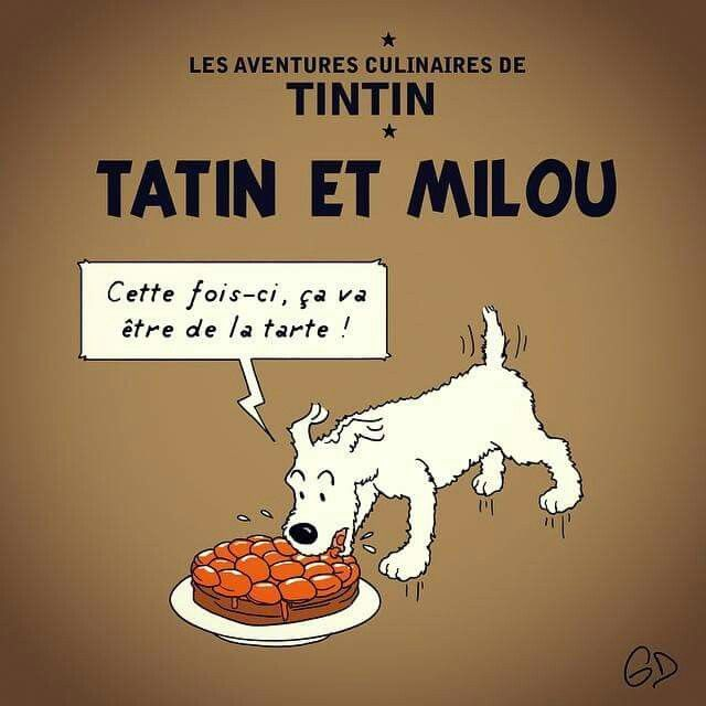 1000 images about tintin on pinterest tibet cuthbert - Image de tintin et milou ...