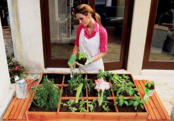 Hortas e jardins elevados permite o cultivo de plantas numa pequena área, de forma concentrada.