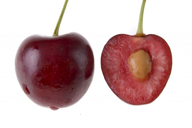 How to grow a cherry tree from a cherry pit.