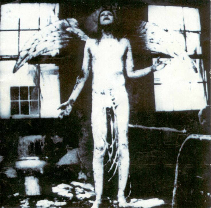 Lyric antichrist superstar lyrics meaning : 203 best Marilyn Manson & more images on Pinterest | Music, Scale ...