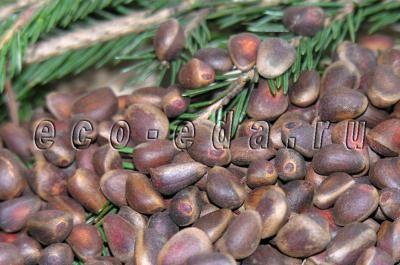 Орех кедровый - это семена кедра сибирского. В строго научном смысле они орехами не являются, однако такое название давно закрепилось за ними.