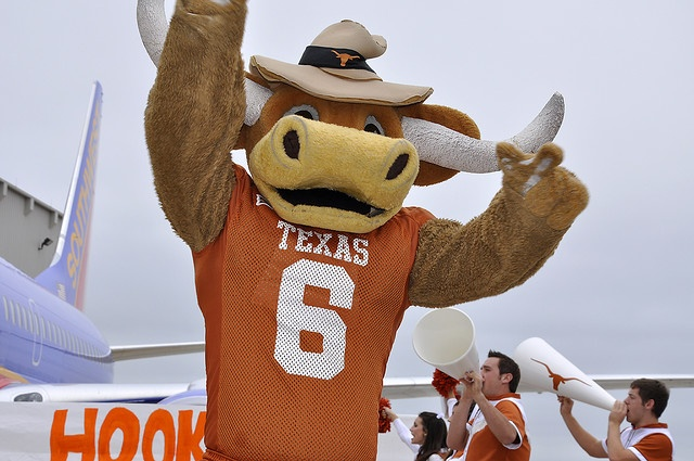 Hook Em is the University of Texas mascot. Bevo is the ...