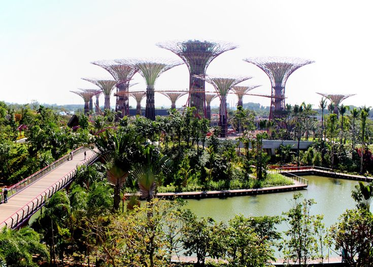 garden by the bay bar supertree indochine with design inspiration - Garden By The Bay Bar