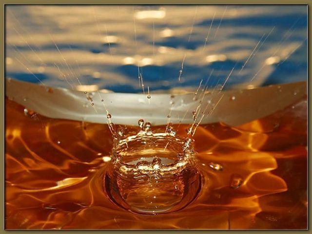 منتديات السادة الروعة في انعكاس الالوان على قطرات الماء Water Bowl