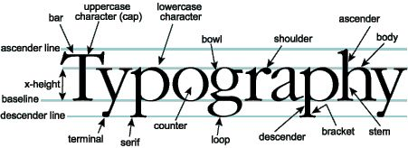 Typography terminology all in one.