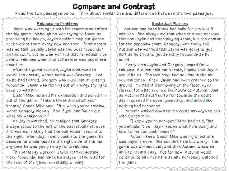 compare contrast essay grade 3