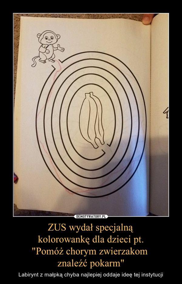 """ZUS wydał specjalną kolorowankę dla dzieci pt. """"Pomóż chorym zwierzakom znaleźć…"""