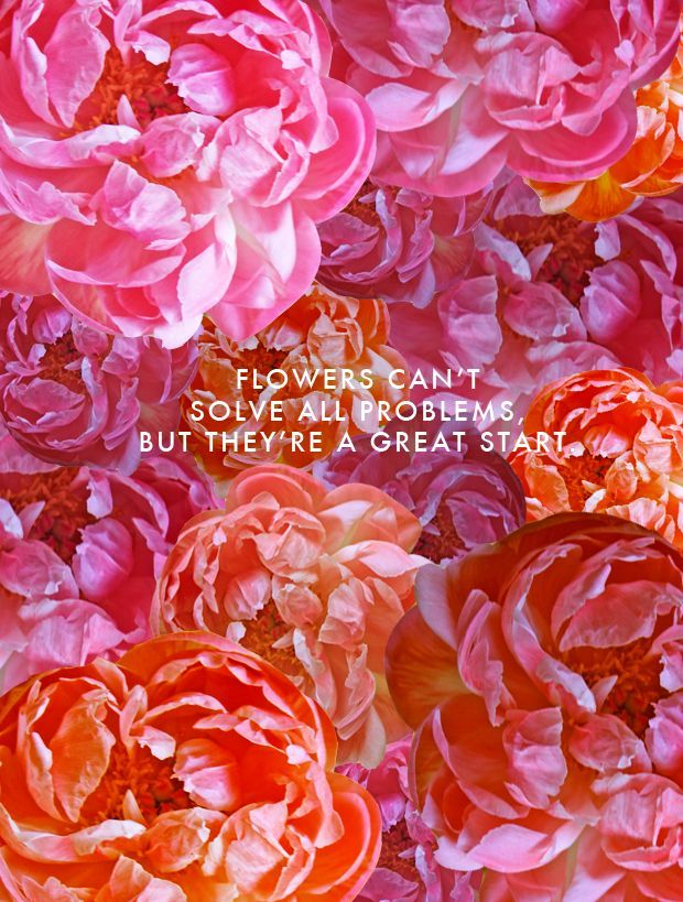 56 best flower quotes images on Pinterest | Flower quotes, Words ...