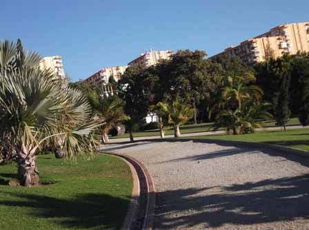 Path and Palm Trees at La Paloma Park, Benalmadena, Spain