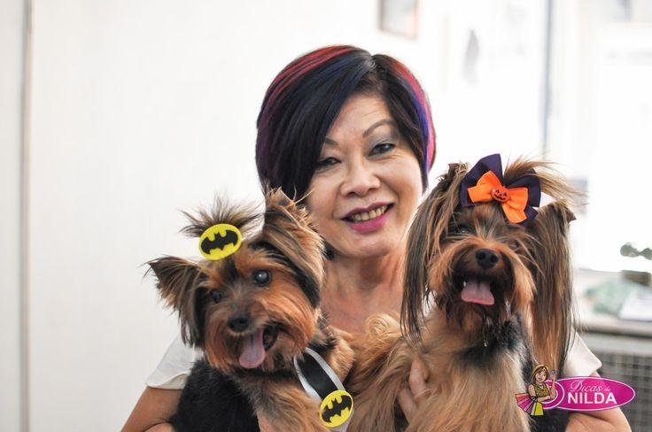 Dicas da Nilda: BANHO E TOSA: Fevale Pet Boutique & Salon