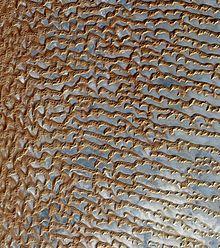 Rub' al Khali - Wikipedia, the free encyclopedia, The Empty Quarter