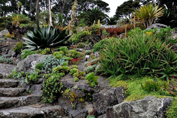 Wellington Botanic Garden Reviews : Wellington places to visit