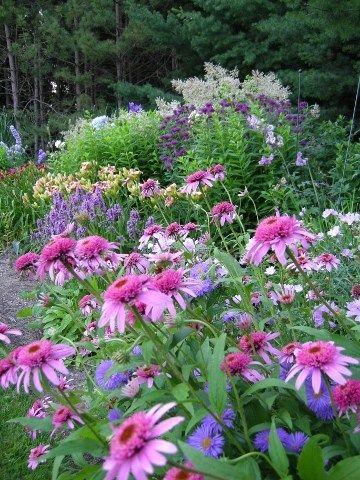 25+ Best Ideas About Autumn Garden On Pinterest | Prairie Garden