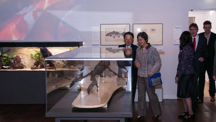 Ambassadeur van Japan in Nederland en zijn vrouw bezoeken Vissen - van Haai tot Koi.
