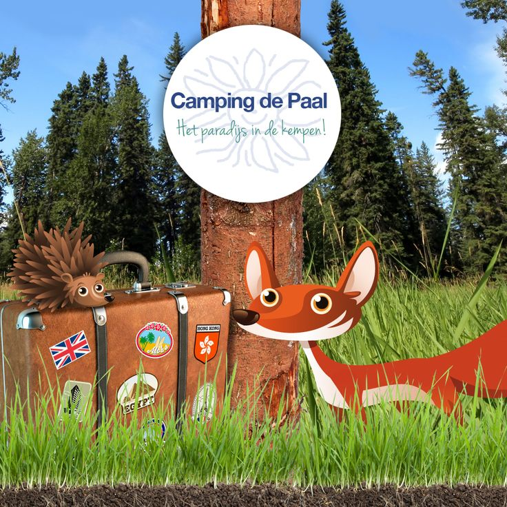 De Paal kindercamping - http://www.depaal.nl/kindercamping#