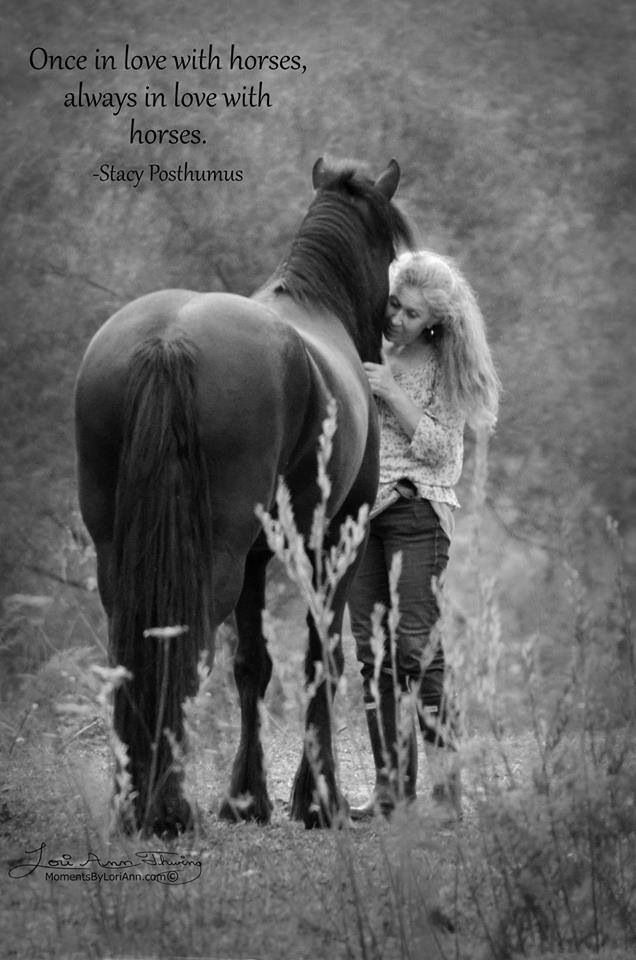 118 best Horses Heal Hearts images on Pinterest ...