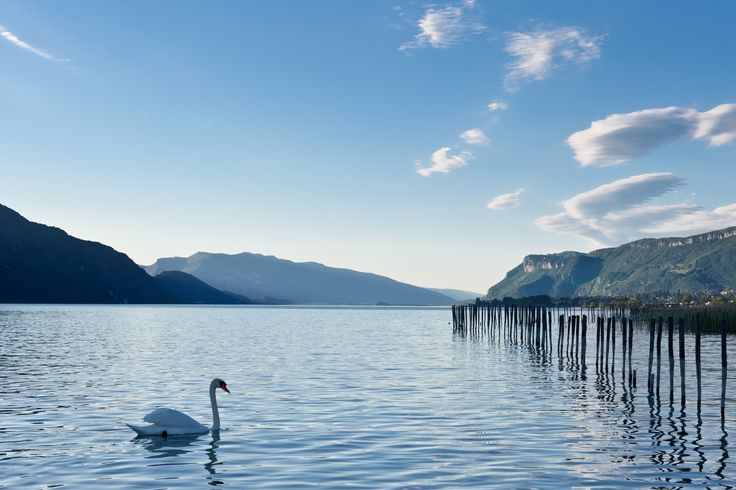 https://flic.kr/p/nJudic | Lac du Bourget - Savoie - France