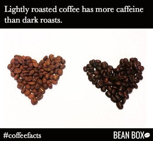 Is Light Roast Coffee More Caffeinated Www Lightneasy Net. Does Dark Coffee  Have More Caffeine You