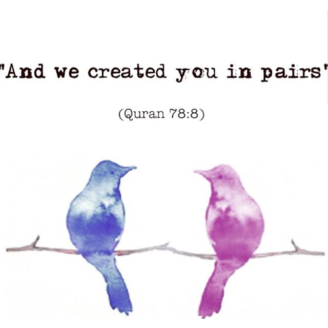 "Surah An-Naba (The Tidings) #Quran 78:8 ""And We Created You In Pairs"""