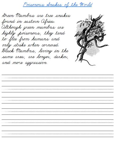 free printable cursive handwriting worksheet on green mamba snakes in africa handwriting. Black Bedroom Furniture Sets. Home Design Ideas