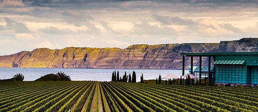 Elephant Hill Winery Hawkes Bay