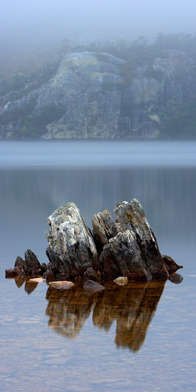 Dove Lake Rocks #landscape #photography