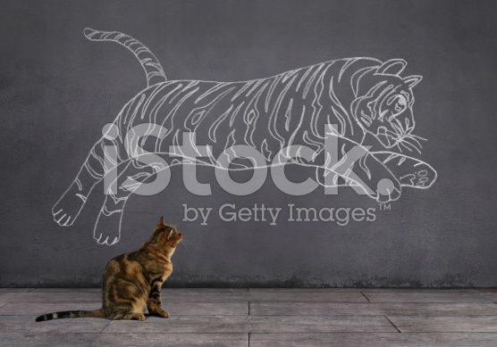 Dream of Tabby Cat: Being Tiger (royalty-free stock photo) © mgkaya