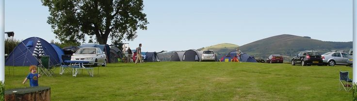 Welcome to Foxholes Camping: Shropshire Camping, Touring Campsite Wales, Country Camping Powys, Camping Mid Wales, Craven Arms Eco-Friendly ...