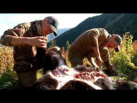 How to Skin and Butcher a Black Bear with Steven Rinella - MeatEater - YouTube