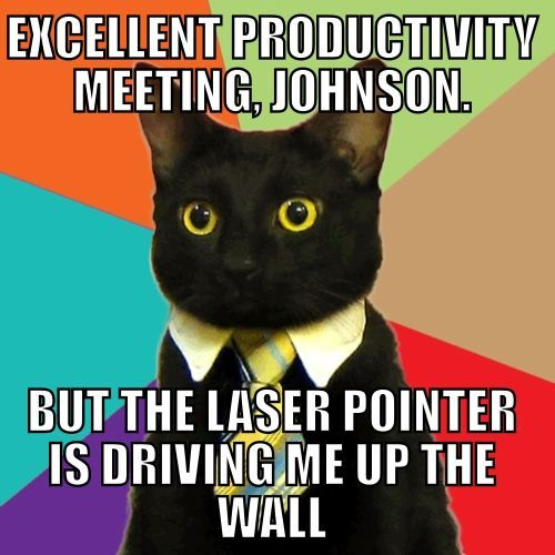 An extensive collection of Business Cat Memes - New and Old Business Cat Memes with new submissions being added all the time. Enjoy!