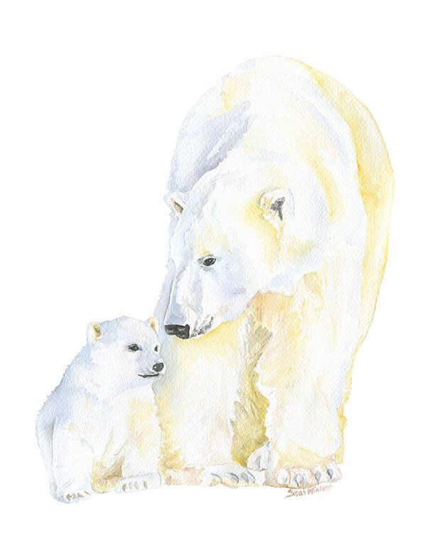 Watercolor Polar Bears, mother and cub by Susan Windsor