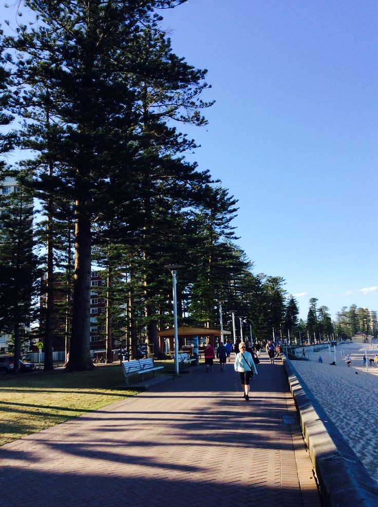 Along the boulevard of Manly beach...