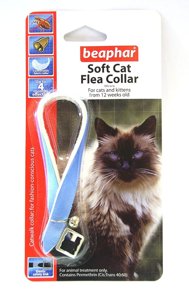 Beaphar Cat Flea Collar, Catwalk Collection Blue