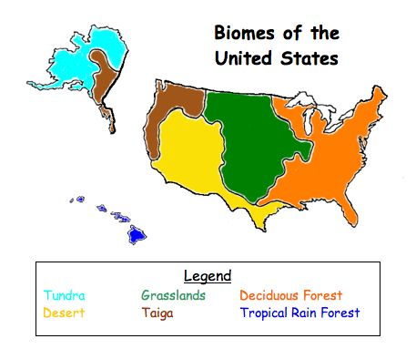 science homework help on biomes in washington state