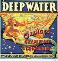 love the mermaid citrus label