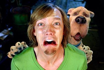 matthew lillard shaggy with scooby matthew lillard