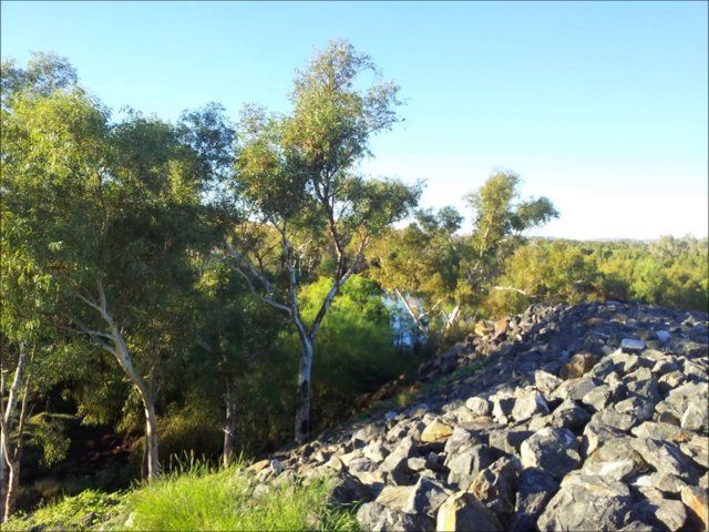 From north of Carnarvon to DeGrey River, the adventures of Ruffy the plastic dog.