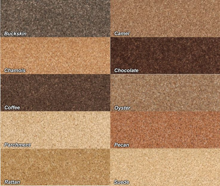 Carpet colors corina pinterest carpets colors and for Paint colors for brown carpet