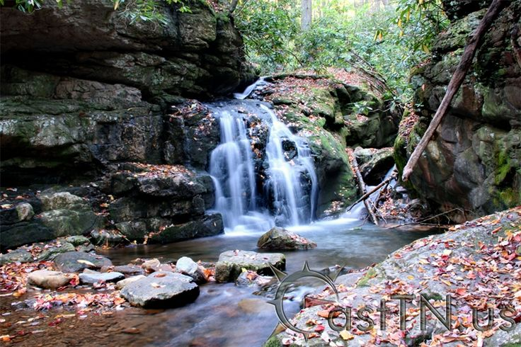 Blue Hole Falls | East Tennessee Attractions, Hiking, Outdoor Recreation | Northeast Tennessee | Tri-Cities | Johnson City | Bristol | Kingsport | Elizabethton | Jonesborough | Greeneville | Washington | Sullivan | Carter | Greene