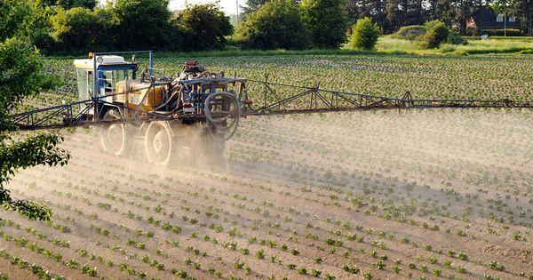 Stéphane Le Foll veut réduire l'usage des pesticides de 50 % en 10 ans