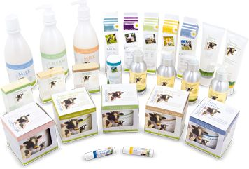 MooGoo is an Australian company that makes a range of natural, safe products with effective active ingredients designed for people with skin and scalp problems - I love this for maintaining my children's ezcema problems.