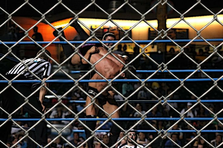 WWE Elimination Chamber 2014 Live Chat