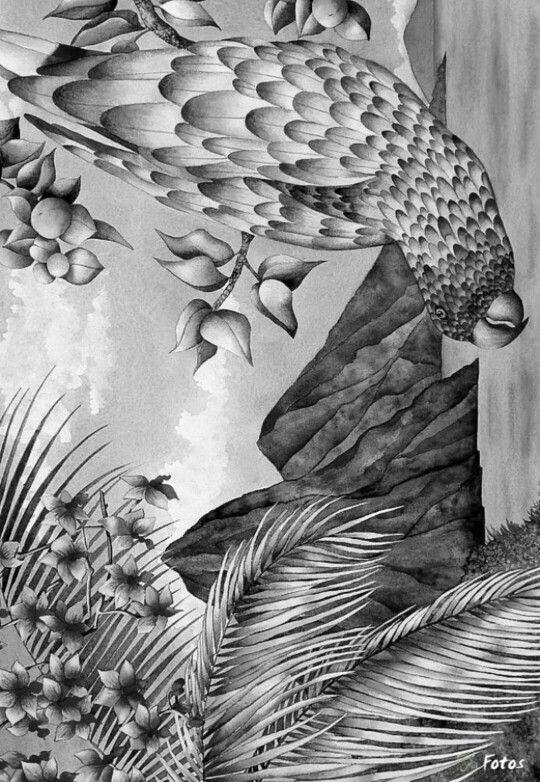74 Best Tropical Birds Seashells Images On Pinterest