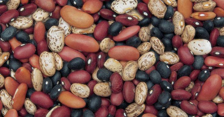Ejemplos de legumbres. Las legumbres son plantas que tienen vainas con semillas, como los diversos tipos de frijoles y guisantes. Las semillas de soja, habas, guisantes y cacahuates son legumbres. Estas ofrecen una serie de beneficios para la salud de quienes las consumen en su dieta.