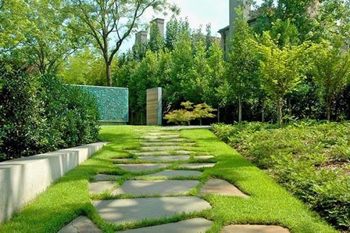 Back Yard Landscape Design Ideas