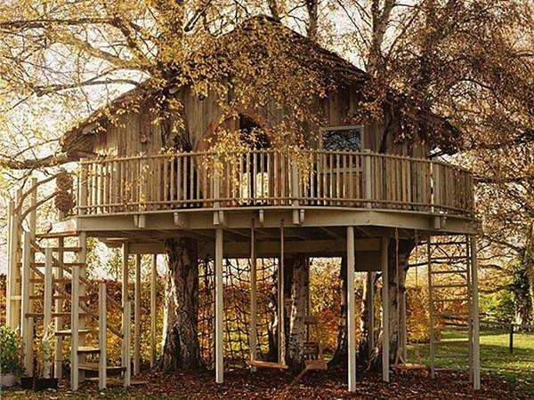 Ladder, rope, stairs, multiple swings, this tree house has lots of fun ways to get in and out and play.Trees Forts, Tree Houses, Guest House, Dreams House, Treehouse, Trees House, Trees Home, Cubbies House, Backyards