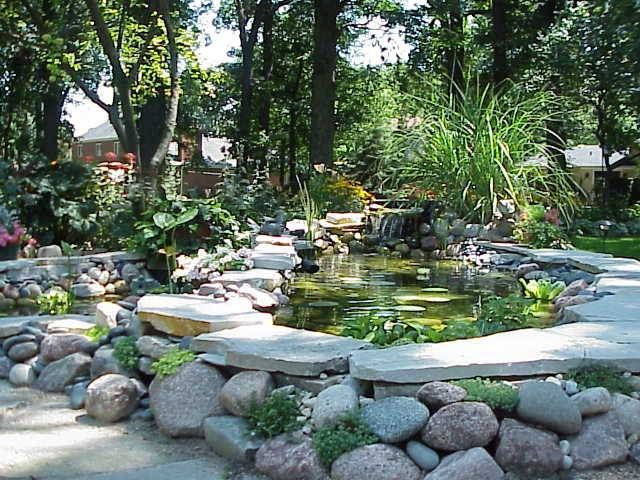 Elevated Koi Pond and Water Garden