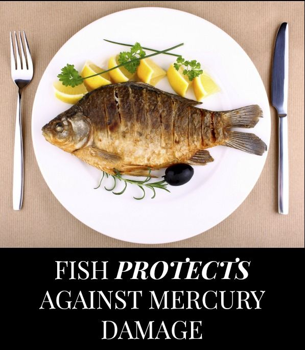 Fish 39 s fatty acids may undo mercury related brain damage for Mercury fish pregnancy