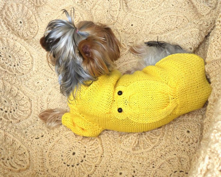 Dog clothing, Hand Knit Dog Clothes,Dog Sweater from Crocheted booties, blanket, exclusive garments are handmade   LyudmilaHandmade by DaWanda.com